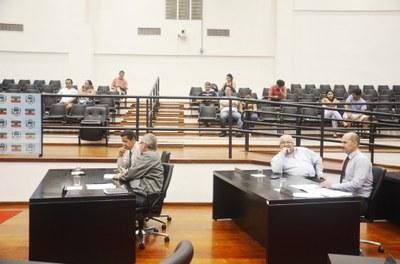 Câmara decide adiar votação de Projetos de Lei sobre arborização urbana e capoeira